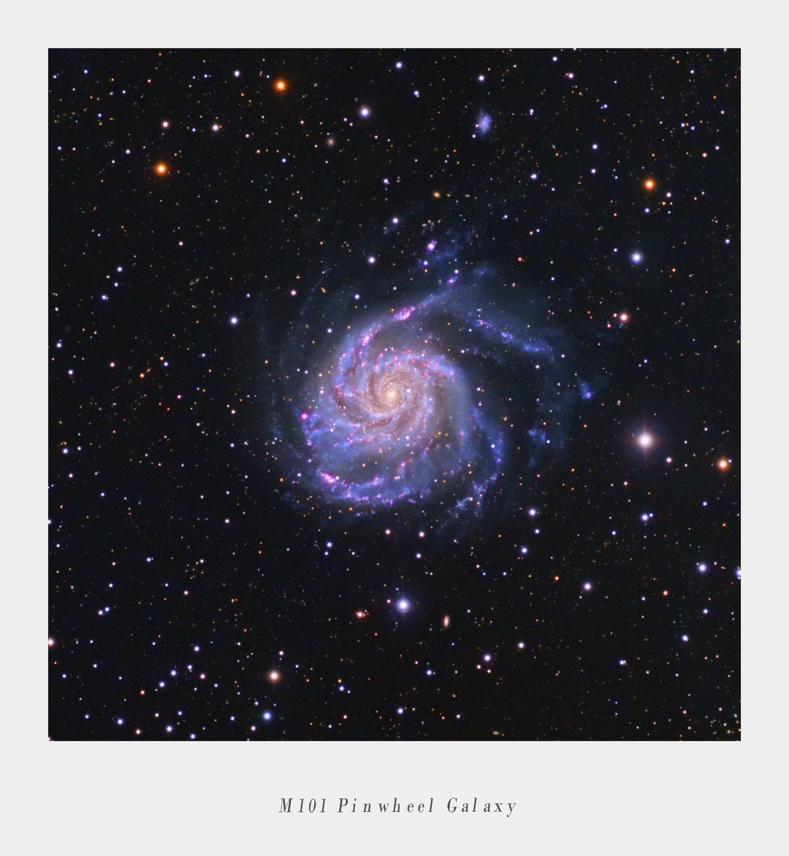 M101_FInal_Work_Crop_Text.jpg
